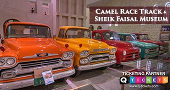 CAMEL RACE TRACK AND SHEIKH FAISAL MUSEUM