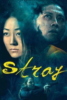 STRAY (ENGLISH)