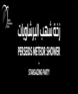 Perseids Meteor Shower + Stargazing Party