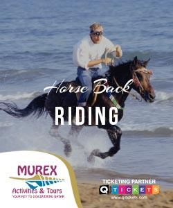 HORSE BACK RIDING (1 HR RIDE)
