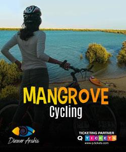 Mangrove cycling tour