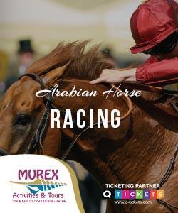 ARABIAN HORSE RACING (4 HRS)