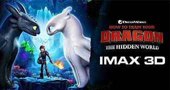 HOW TO TRAIN YOUR DRAGON: THE HIDDEN WORLD (IMAX-3D) -Movie banner