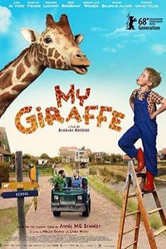 MY GIRAFFE (ENGLISH)
