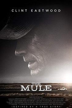 THE MULE (ENGLISH)